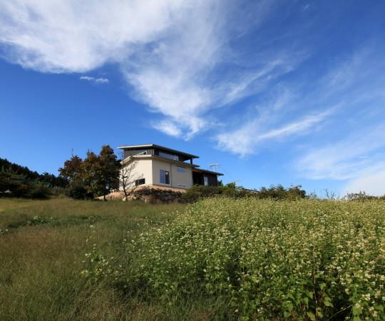 AP.House